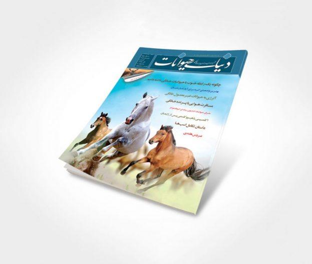 شماره 11 مجله دنیای حیوانات