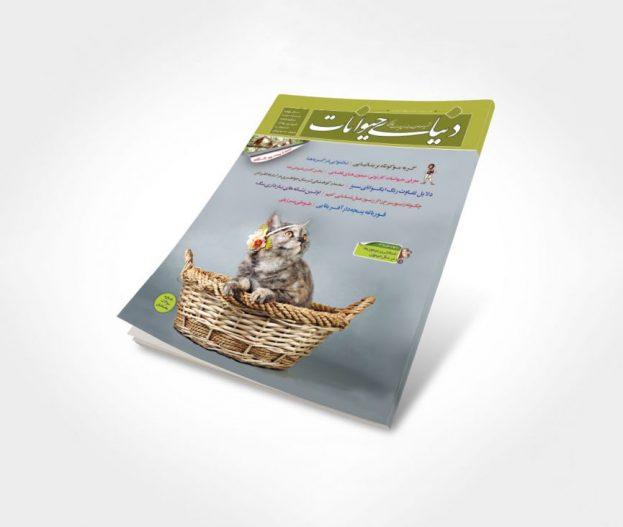 شماره 13 مجله دنیای حیوانات