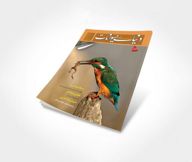 شماره 5 مجله دنیای حیوانات