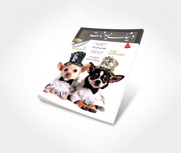 شماره 6 مجله دنیای حیوانات