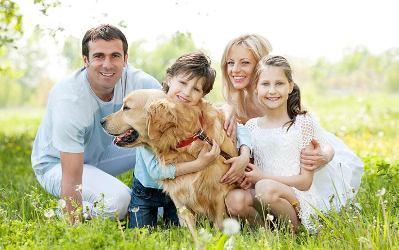 فواید و مضرات داشتن حیوانات خانگی
