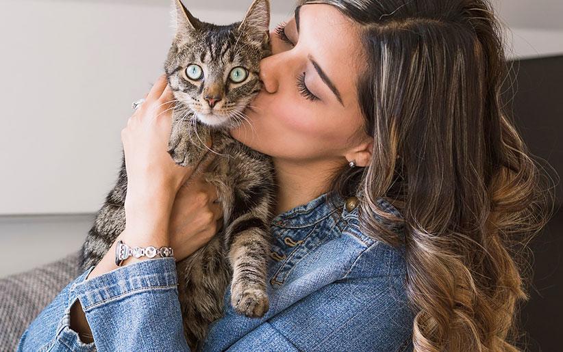 ۸ روشی که گربهها علاقه خود را به شما نشان میدهند