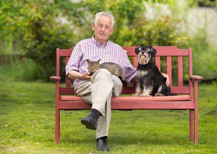 بیماریهای قابل انتقالبین انسان و حیوانات خانگی