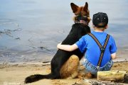 دوستی انسان و حيوانات خانگی