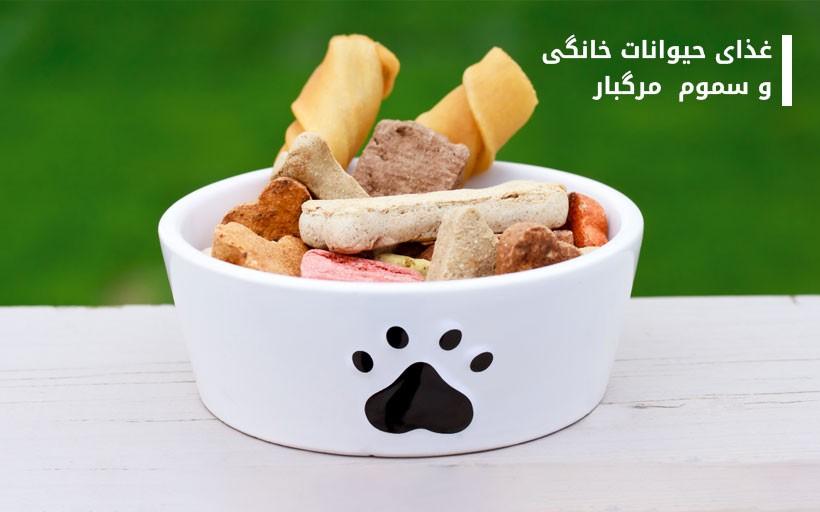 غذای حیوانات خانگی و سموم  مرگبار