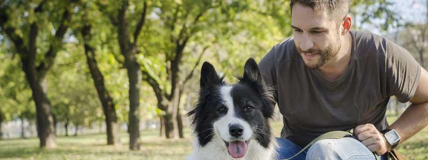 کانال تلگرام حیوانات خانگی