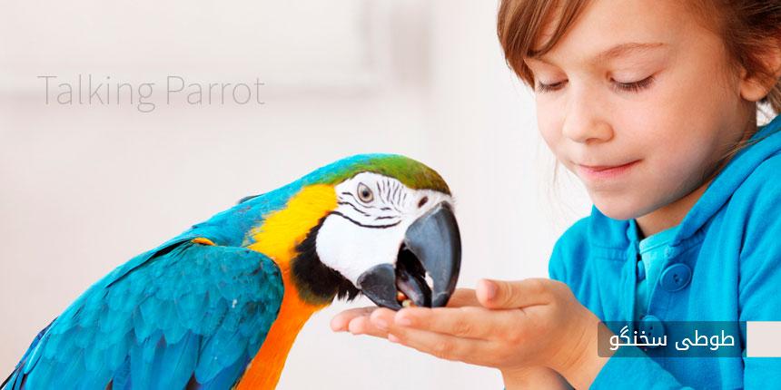 talking-parrot
