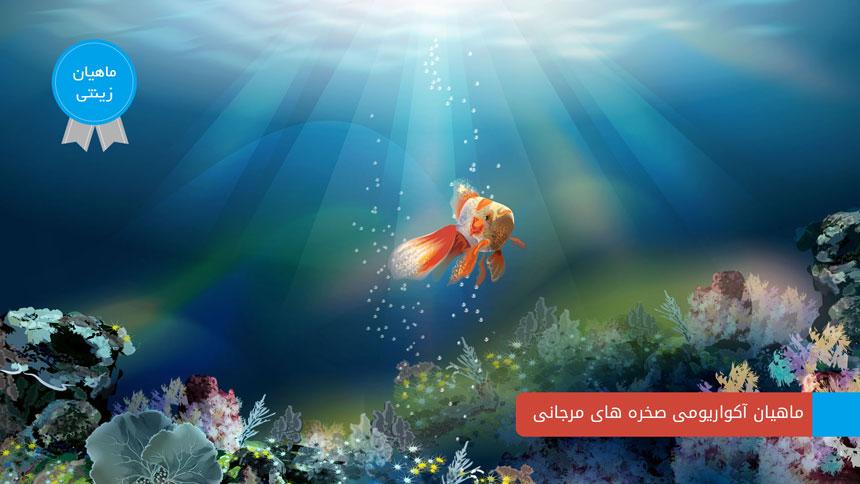 ماهی های آکواریومی صخره های مرجانی