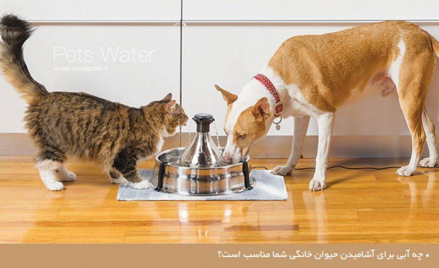 آب حیوانات خانگی