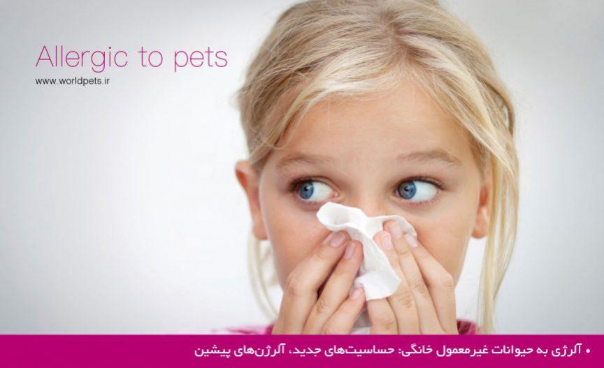 آلرژی به حیوانات غیرمعمول خانگی: حساسیتهای جدید، آلرژنهای پیشین