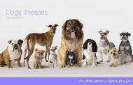 بيماري هاي متداول در نژادهاي مختلف سگ