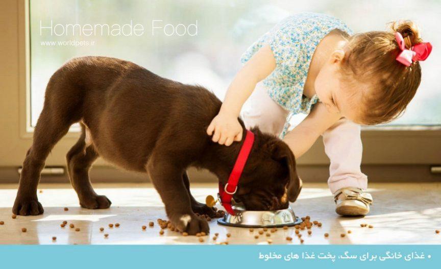 غذای خانگی برای سگ پخت غذا های مخلوط
