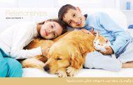 چگونه يك رابطه خوب با حيوانات خانگي داشته باشيم؟