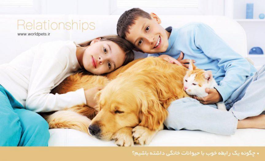 چگونه یک رابطه خوب با حیوانات خانگی داشته باشیم؟