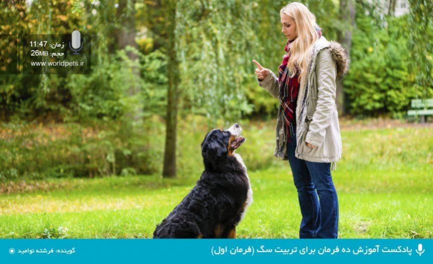 پادکست آموزش ده فرمان برای تربیت سگ (فرمان اول)