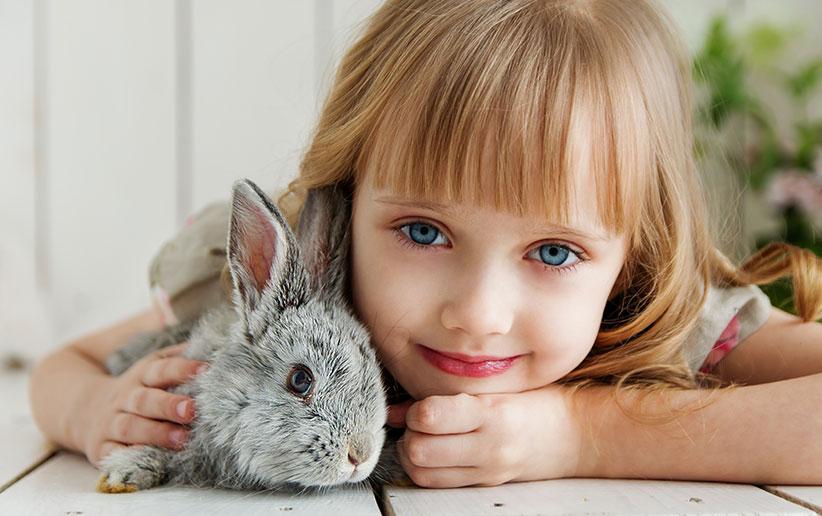 سلامت و رفاه حیوانات با آزادیهای ۵ گانه سازمان بهداشت جهانی