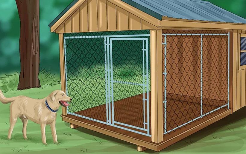 چگونه قفس سگ را تمیز کنیم؟