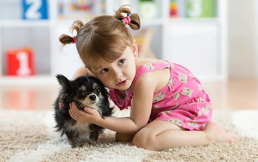 چگونه مرگ حیوان خانگی را به کودکمان توضیح دهیم؟