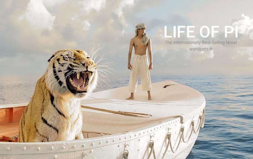 بررسی فیلم زندگی پی (life Of Pi) و حیوانات آن