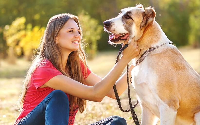 ۳ قانون اساسی برای سلامت حیوان خانگی شما