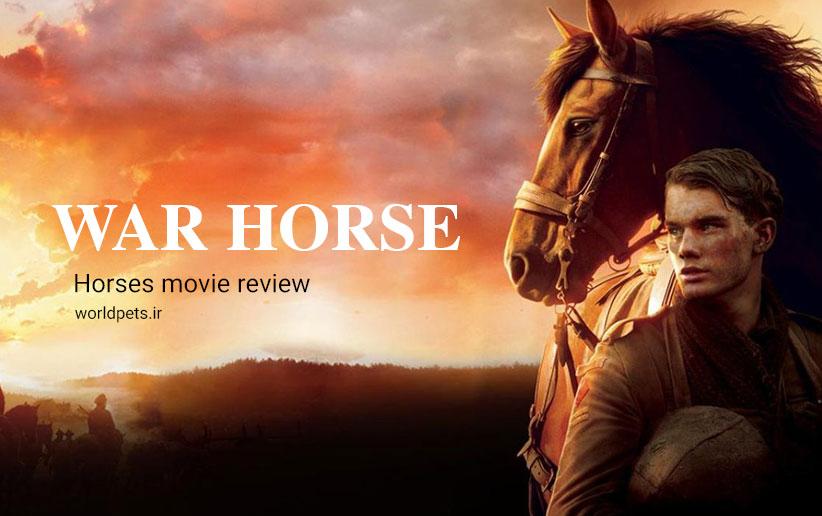 بررسی فیلم اسب جنگی و حیوانات آن