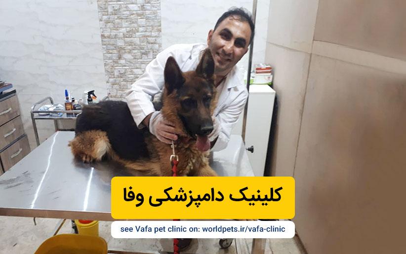 کلینیک دامپزشکی وفا (تهران)