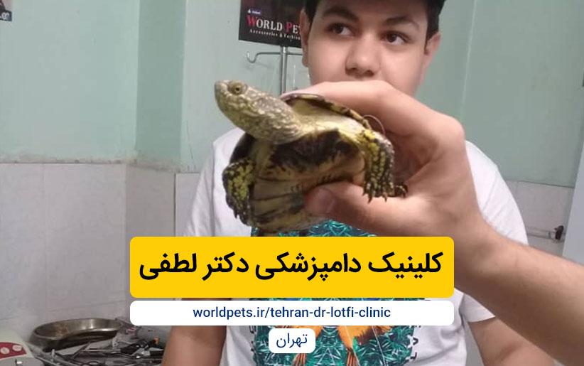 کلینیک دامپزشکی دکتر لطفی (تهران)