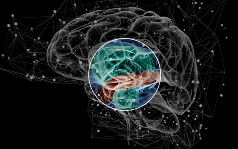 ساختار مغز انسان: علایم اسکیزوفرنی چیست؟